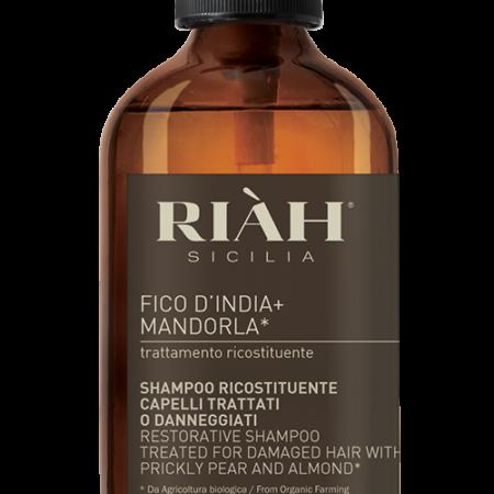 Shampo ricostituente capelli trattati o danneggiati